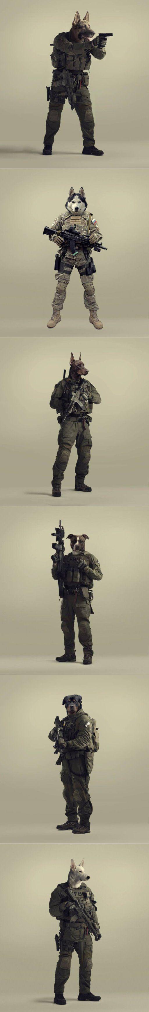 war dogs tactical loadout aegisgears airsoft pinterest war