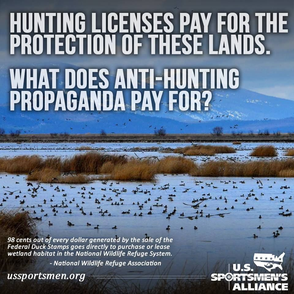 Hunting Memes National Wildlife Refuge Hunting License
