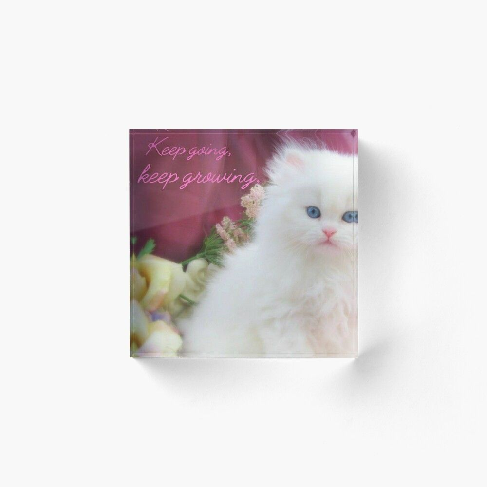 Keep Going Keep Growing Kitten Merchandise And Gifts Acrylic Block By Aarongy1234 In 2020 Art Prints Kitten Photographic Prints