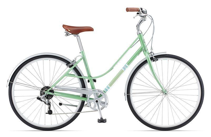 Pin By Jelena Shashkova On Bikes Giant Bicycle Bicycle Bicycle Maintenance