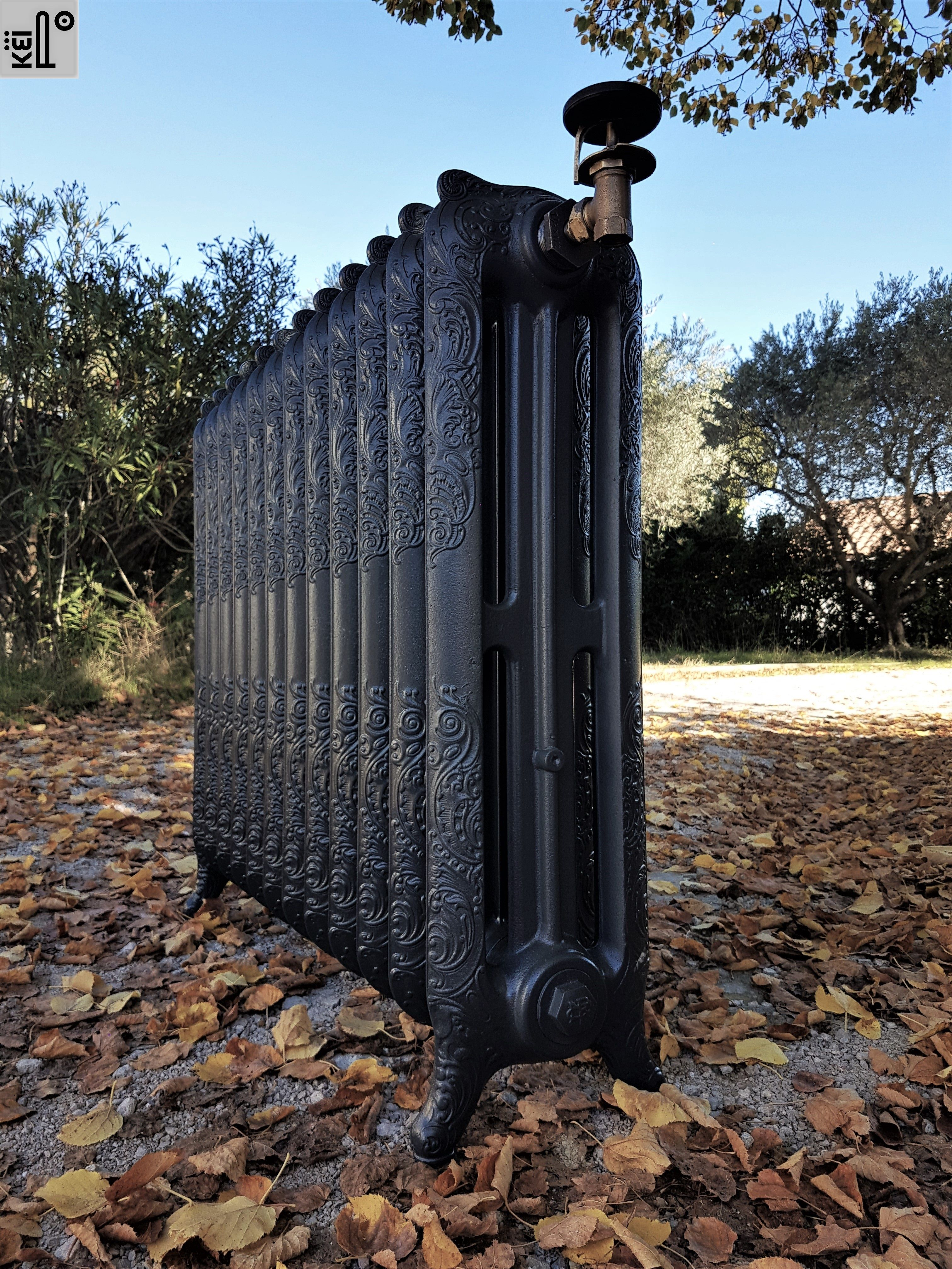 radiateur ancien rococo fleuri en 3 colonnes sous feuilles d automne by k ipo cast iron. Black Bedroom Furniture Sets. Home Design Ideas