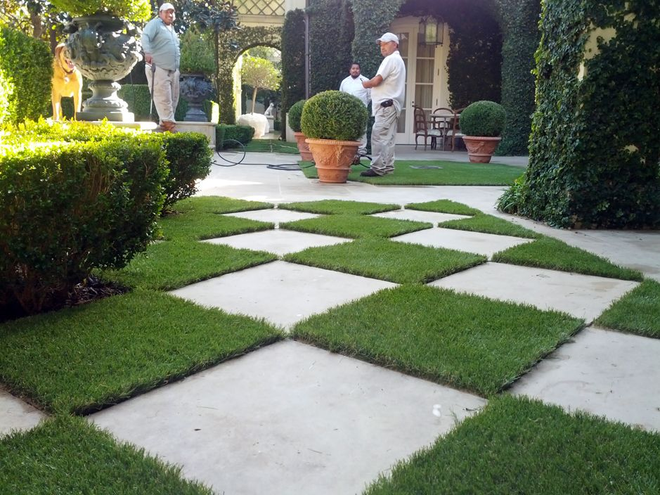 Synthetic Grass San Miguel Arizona Landscaping Business
