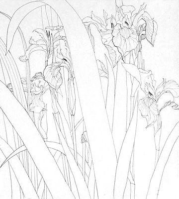 ArtForum - Marina Richterova 2008 | Dibujos de flores | Pinterest ...