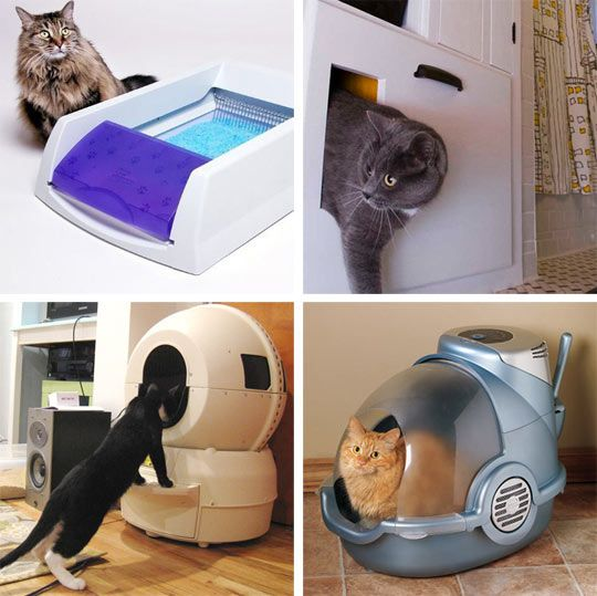 Cat Litter Tech Keeping Your Home Free Of Odors Best Cat Litter Cat Litter Cat Litter Box