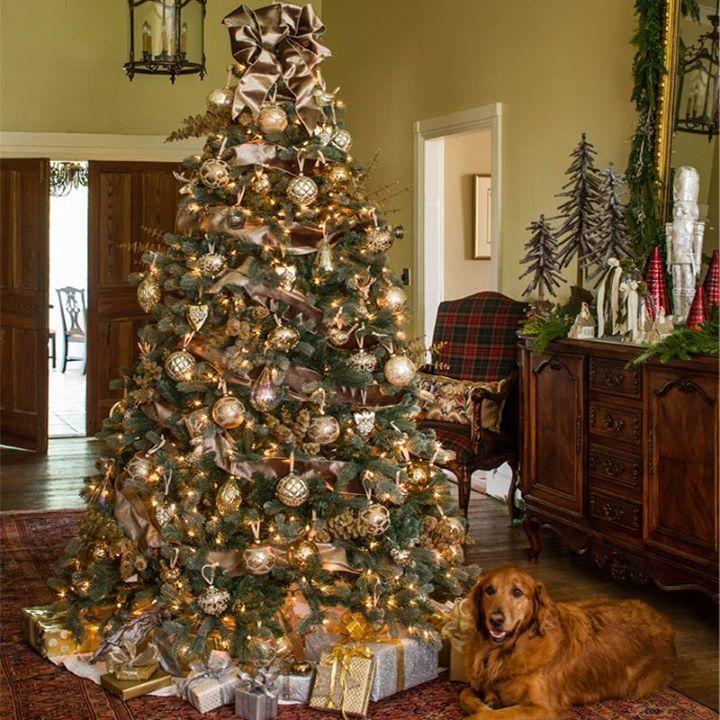 Pin By Christy Milliken On Farm Live Christmas Trees Ribbon On Christmas Tree Southern Living Christmas