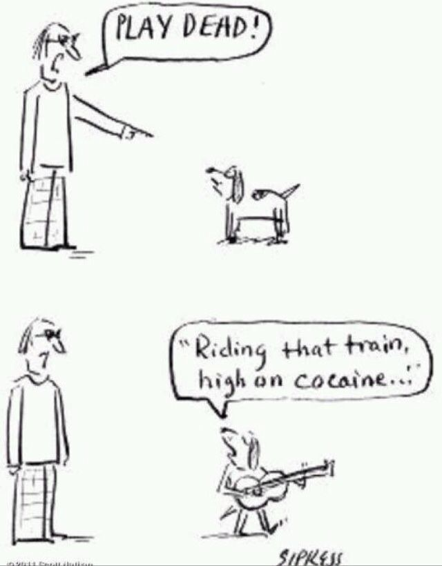 Lyric lyrics to cocaine : 154bmag: Casey jones you better, watch your speed. | Grateful Dead ...