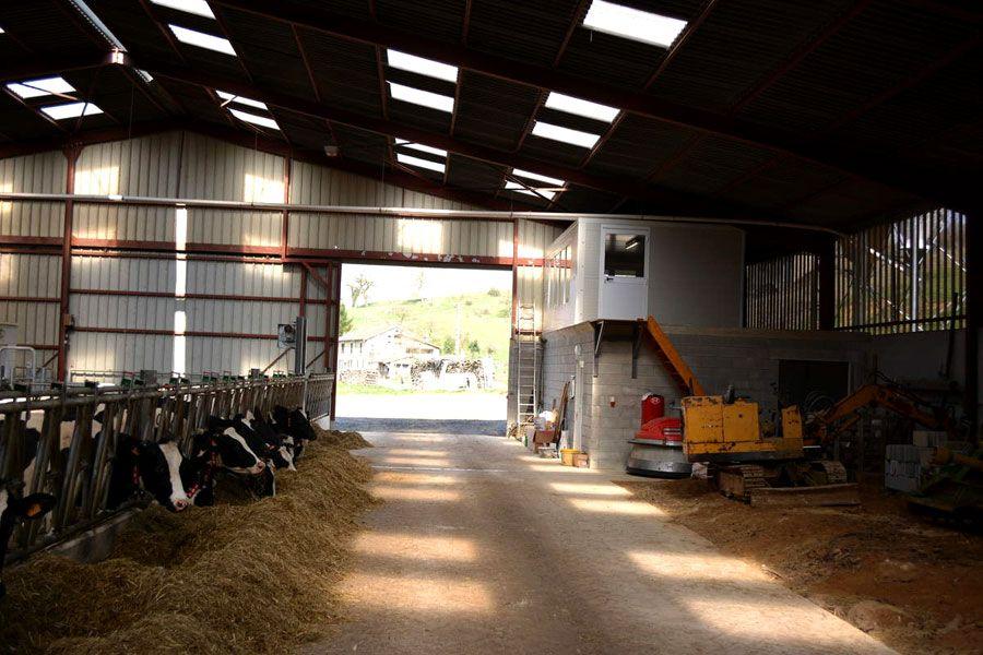 DIY prefabricated office space dairy farm cows | DIY prefabricated ...