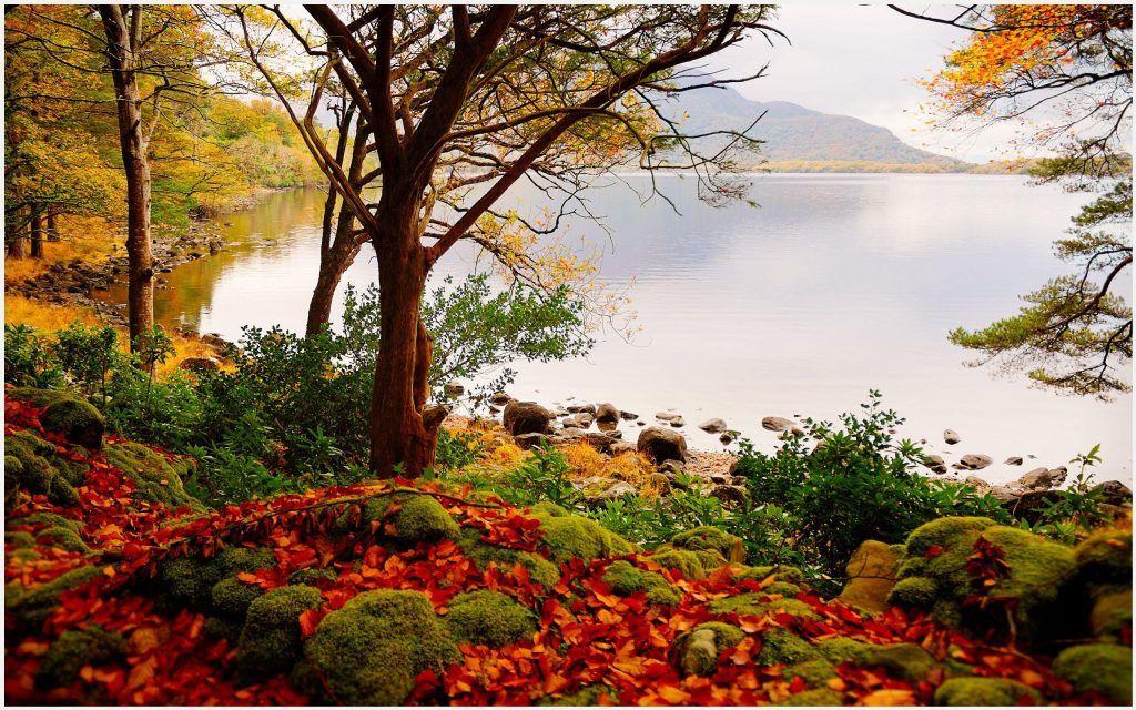 Autumn Forest Lake Beautiful Scenery Wallpaper Autumn Forest Lake Beautiful Scenery Wallpaper 1080p Autumn Forest Lake Beautiful Scenery Wallpaper Desktop A