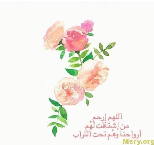 افضل دعاء للميت كتابي وصوتي وادعية للمتوفي تخفف عنه العذاب موقع مصري Free Photo Frames Beautiful Quotes Alhamdulillah
