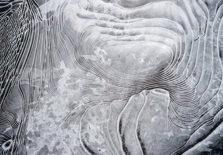 Donald Und Elvis Die Bilder Der Woche Abstract Artwork Abstract Artwork