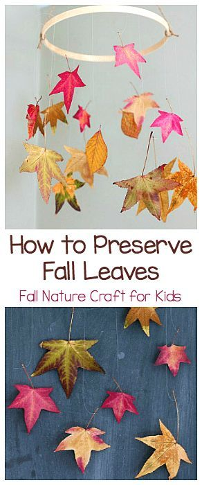 How to Preserve Leaves: Fun Fall Craft for Kids #fallnature