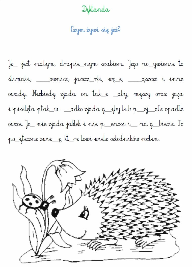 Blog Edukacyjny Dla Dzieci Dyktanda Polish Language Kids Education Education