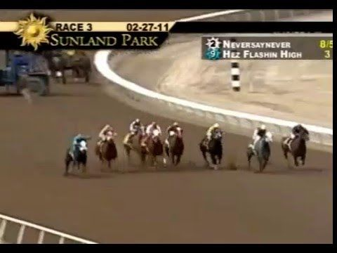Quarter Horse World Record In 330 Yardas Neversaynever Http