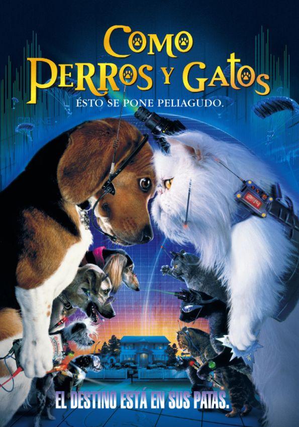 Sin Que Lo Sepan Los Humanos La Lucha Por La Dominacion Mundial Entre Los Perros Y Los Gatos Ha Estado Atravesando Una Tregua Pe Cat Movie Dog Movies Dog Cat