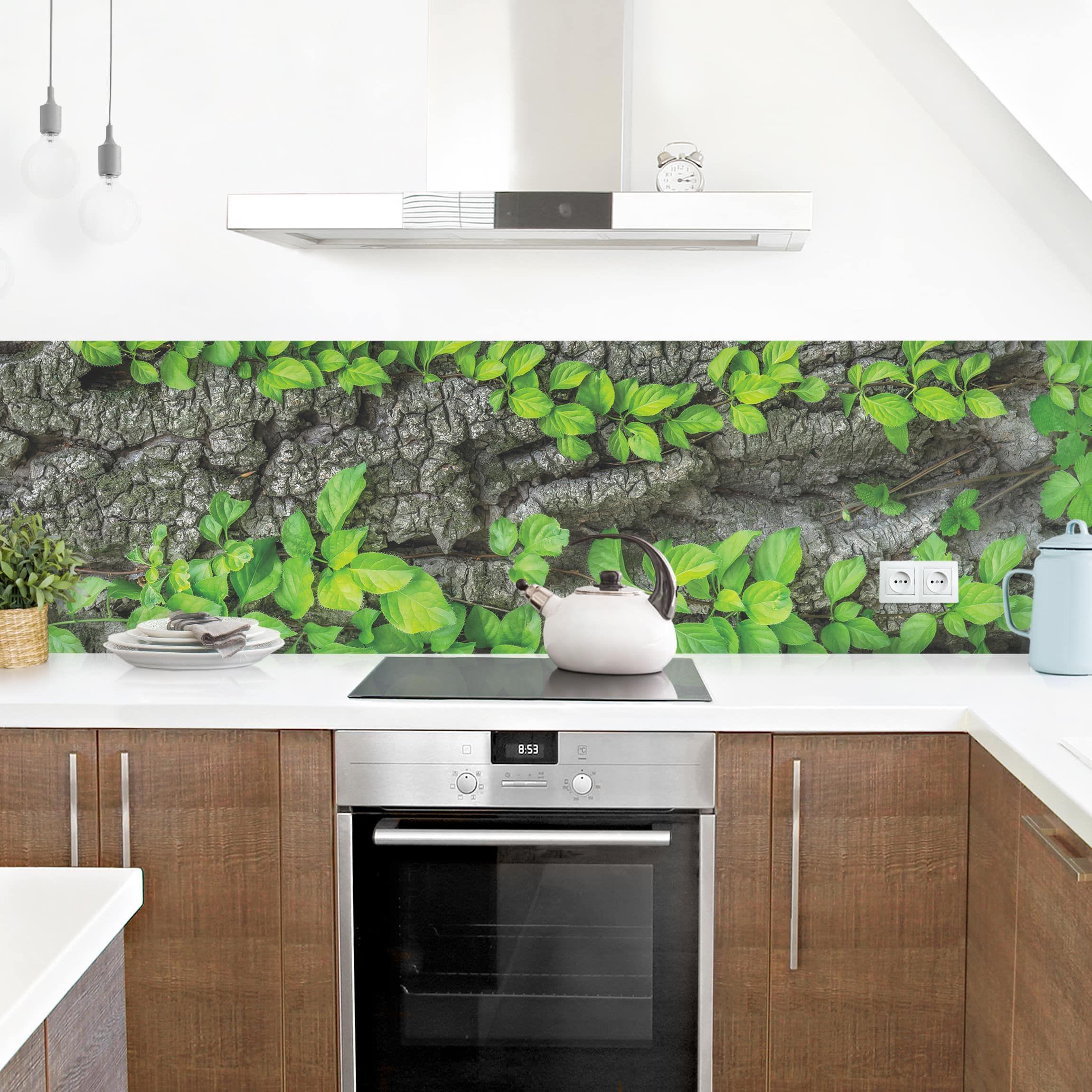 Küchenrückwand Efeuranken Baumrinde Küchenrückwandfolie Küchenrückwand Küche Küchen Ideen