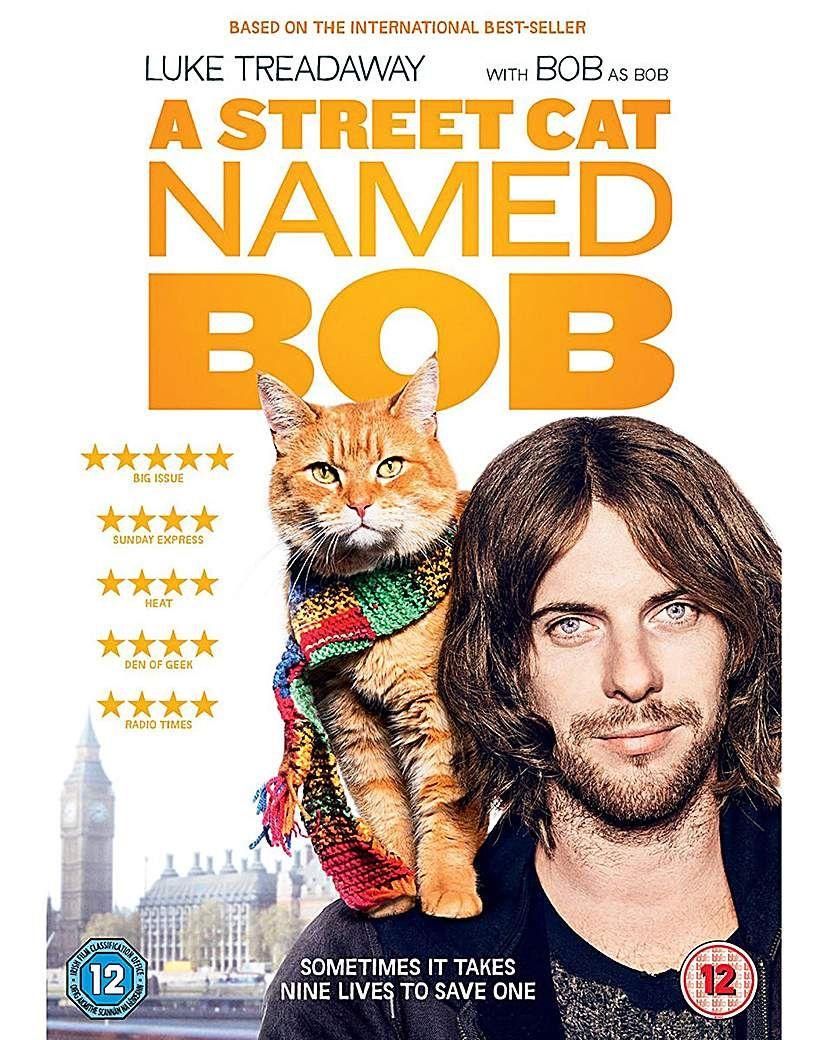 A Street Cat Named Bob A cat named bob, Cat names