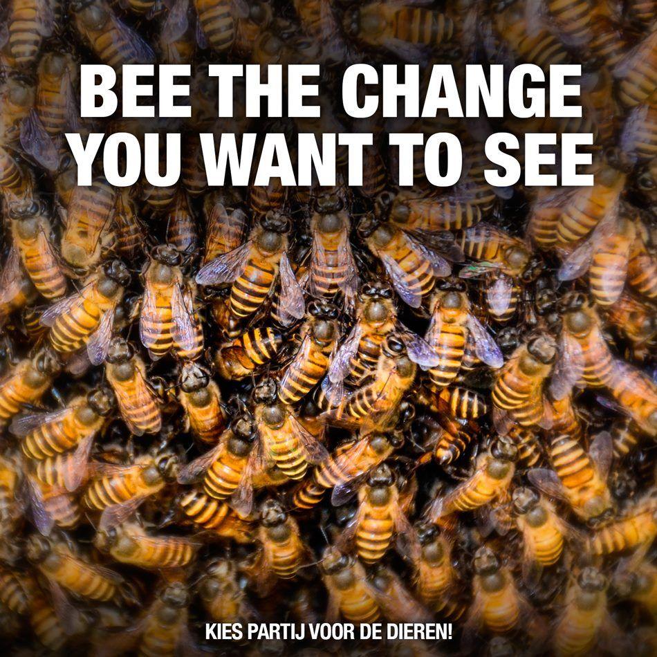 BEE the CHANGE.... :)