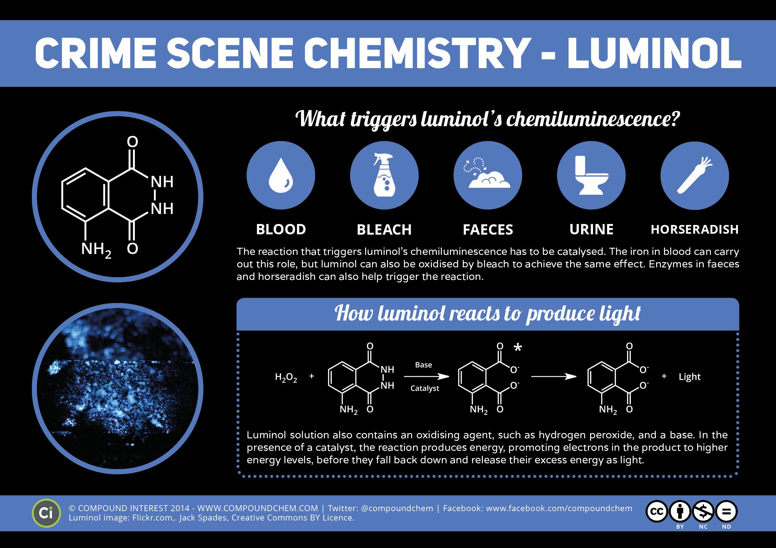 Who discovered luminol