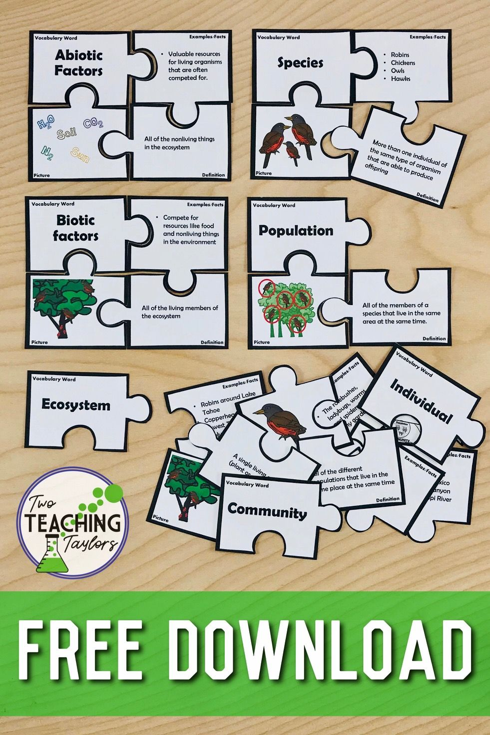 Parts of Ecosystems Vocabulary Puzzles FREEBIE Teaching