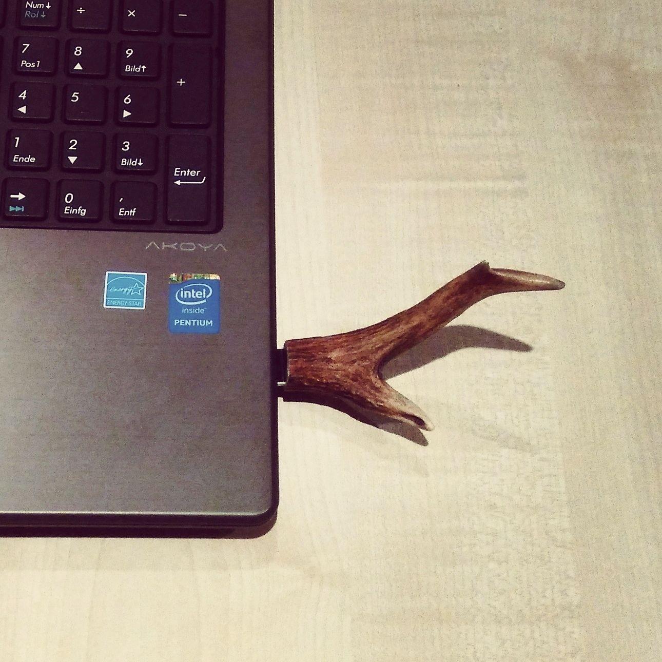 DIY Hirsch USB Stick für Jäger | DIY | Pinterest | Die jäger, Horn ...