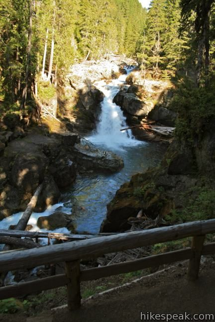 Silver Falls Grove of the Patriarchs combo hike Mt Rainier NP