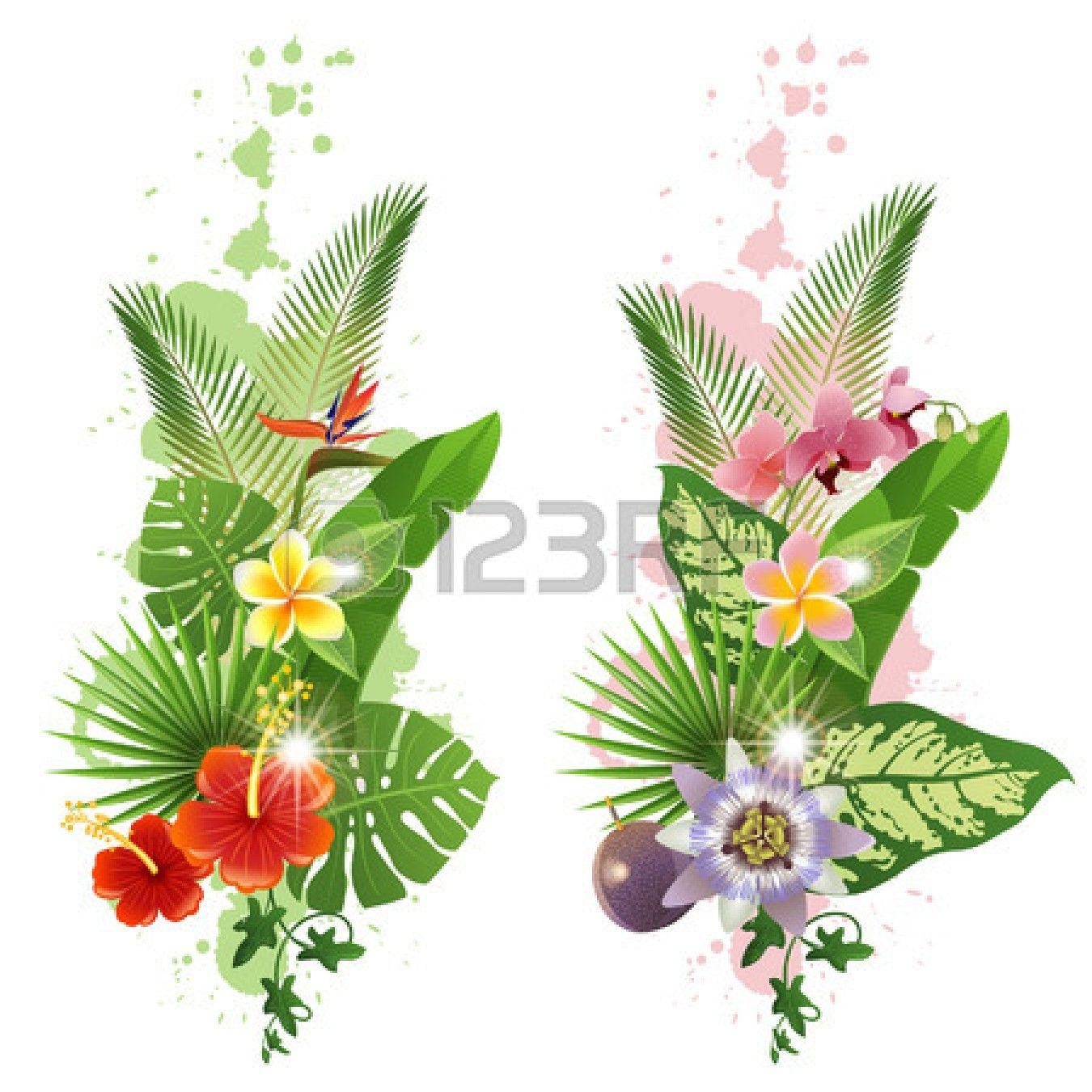 Hojas tropicales brillantes y flores photo pa 39 tattoo for Plantas ornamentales tropicales