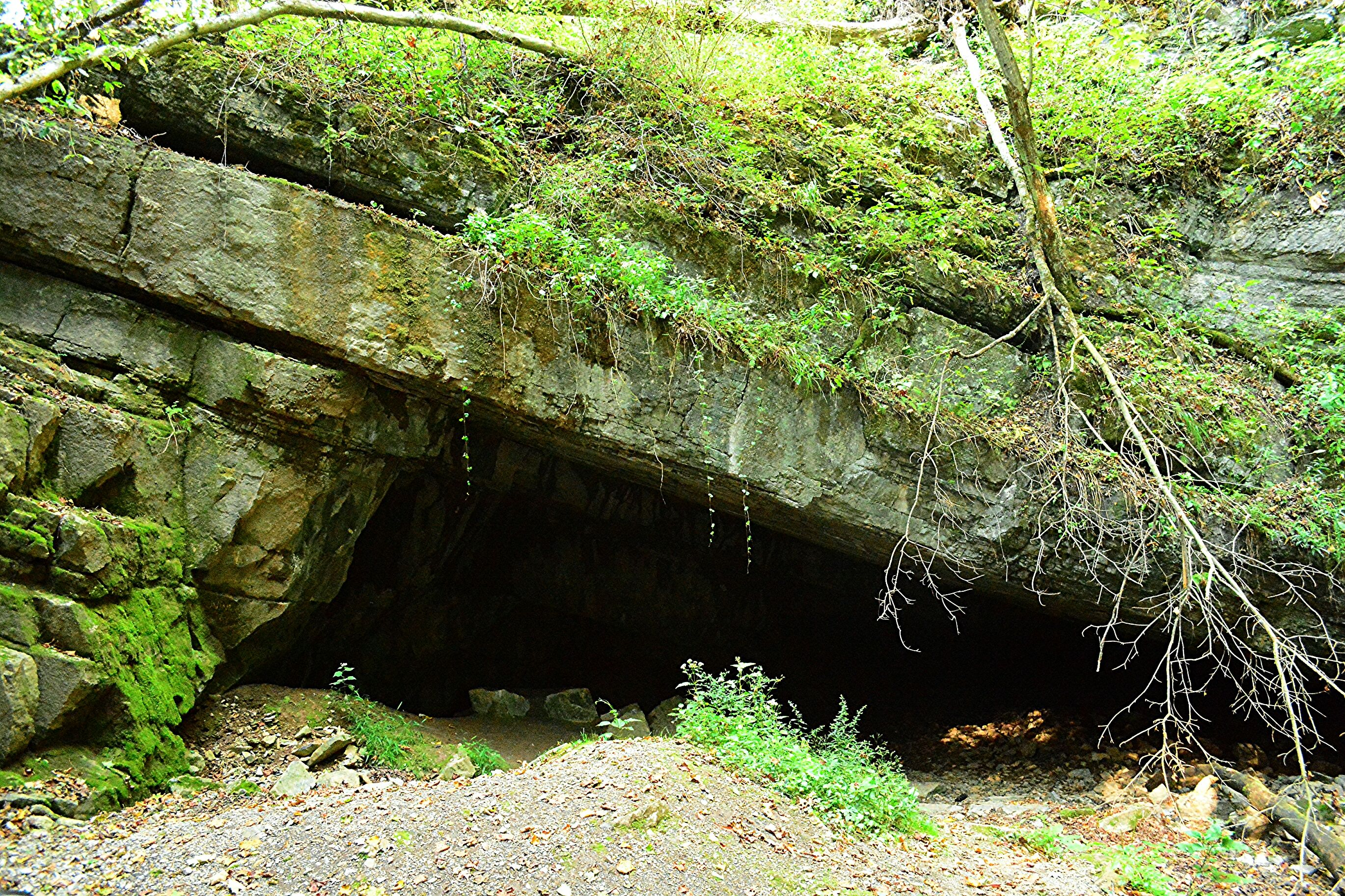Grand Canyon Pa Directions%0A Cave Entrance