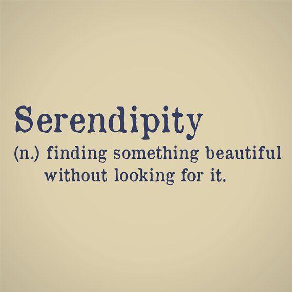 Serendipity August 22, 2015
