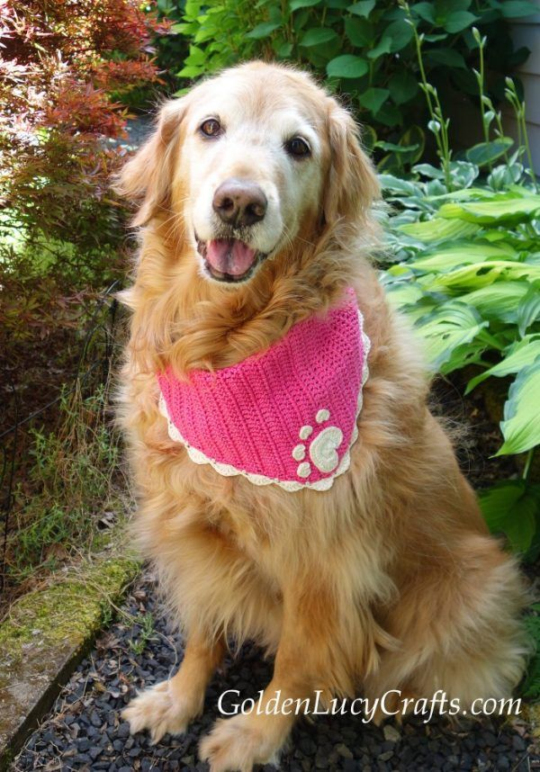 Crochet Dog Bandana Pattern, Crochet for Pets #dogcrochetedsweaters