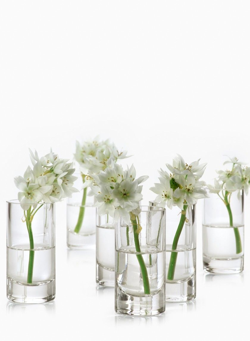 2 x 4in clear glass cylinder set of 4 glass cylinder vases these clear glass bud vases are perfect for single flower stems or a small cluster of reviewsmspy