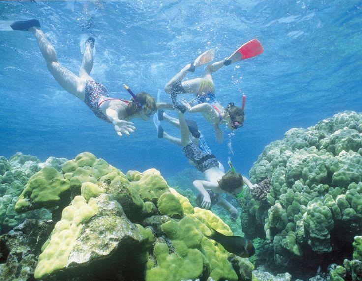 Family fun snorkeling in the water near the beautiful