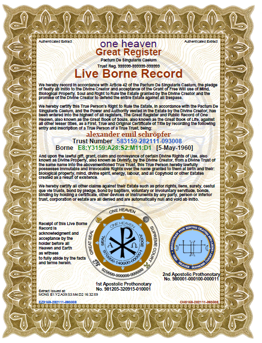 Lebenderklarung Live Born Record Leben Vertrag Wille