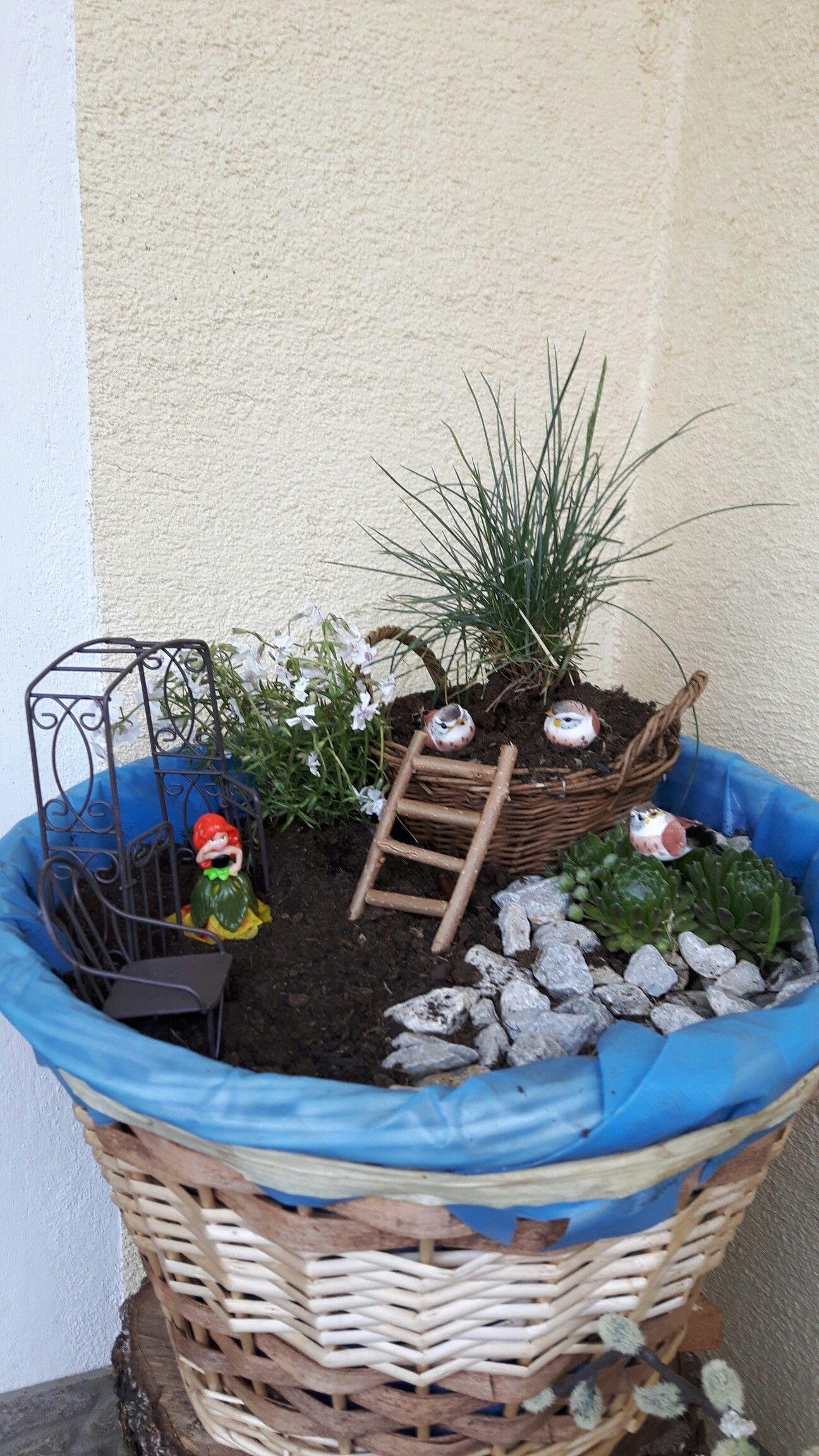 Mein erster kleiner Minigarten