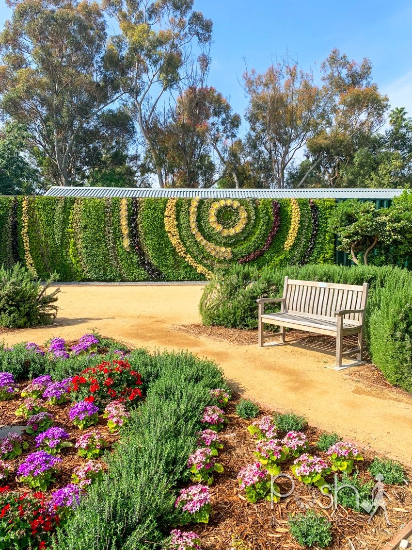 I Visited South Coast Botanic Garden And This Is What Happened