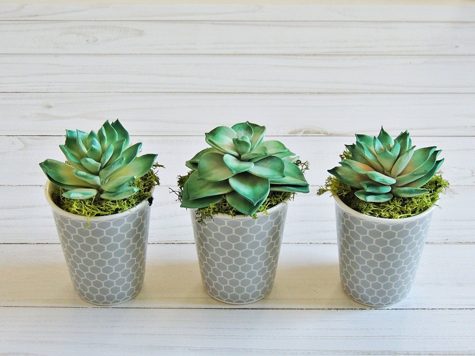 Arredare Con Piante Grasse jars with hand-made succulent plants artificial flowers for