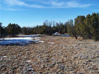 Saint Johns, Apache County, Arizona Land For Sale - 40.06 Acres
