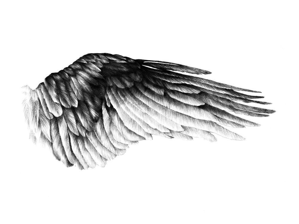 Magdalena Tyboni Art Wings Drawing Wings Tattoo Art