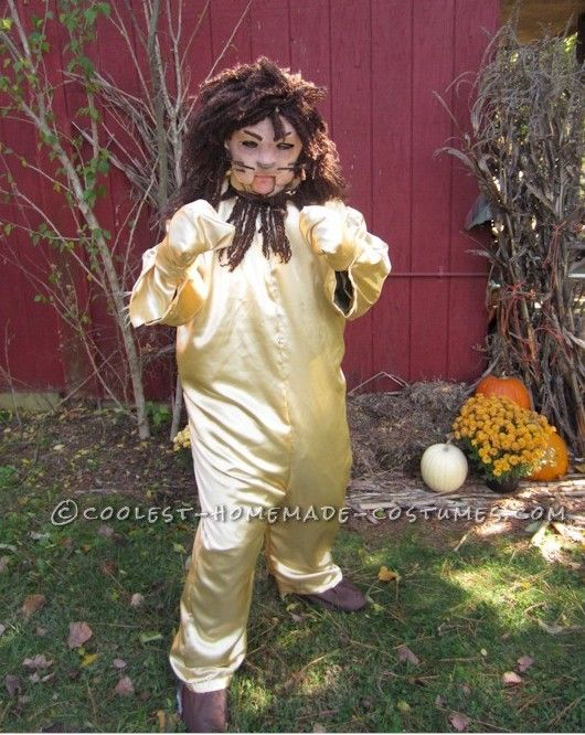 Original Homemade Layer by Layer Wizard of Oz Costume (Lion ...