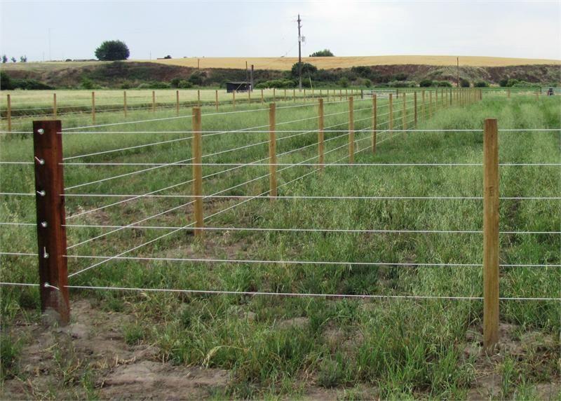 Horse Fence Direct Fencing Pinterest Horse Fencing