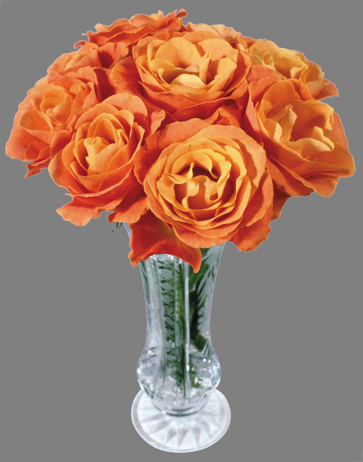 Vase PNG Image (With images)   Ceramic vase, Vase, Flower vases