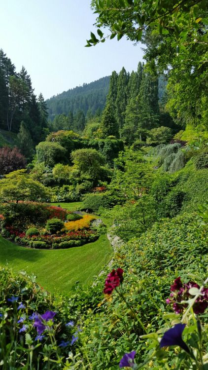outdoormagic: Butchart Gardens, in all its glory, Victoria, BC #butchartgardens