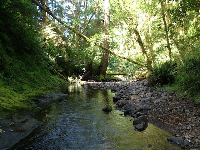 Rock Creek Wilderness: No Trail, No Problem | Cascadia ... on Cascadia Outdoor Living Spaces id=16865