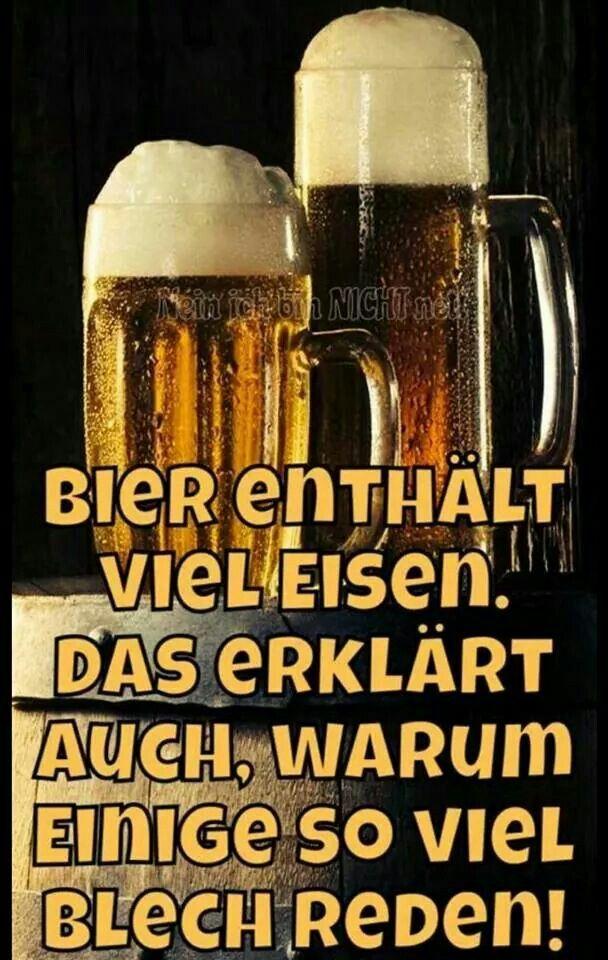 Das liebe Bier! ;-) /Google + | Witzige sprüche, Dumme ...