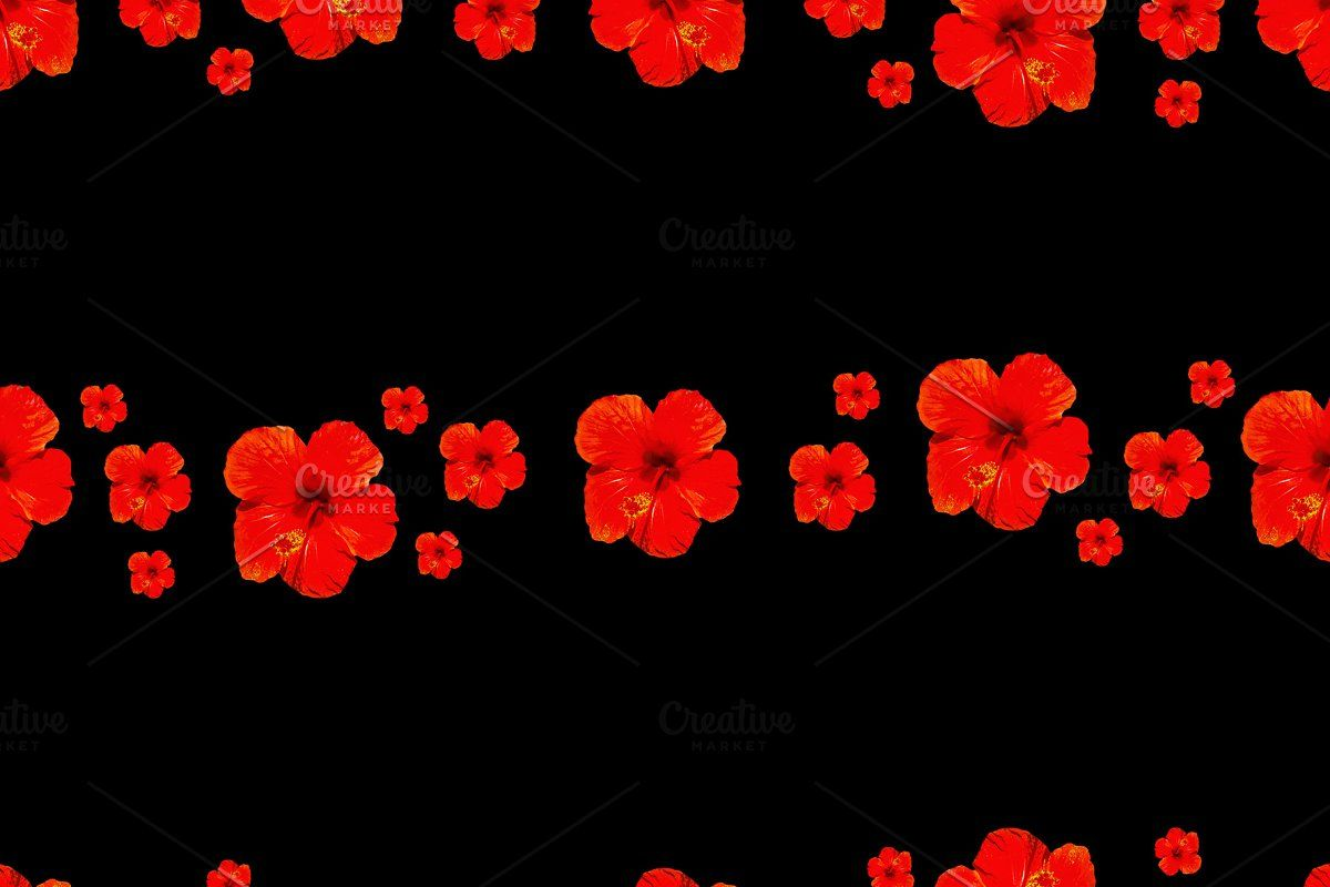 Black Background With Red Flowers De Red Flowers Black Backgrounds Background