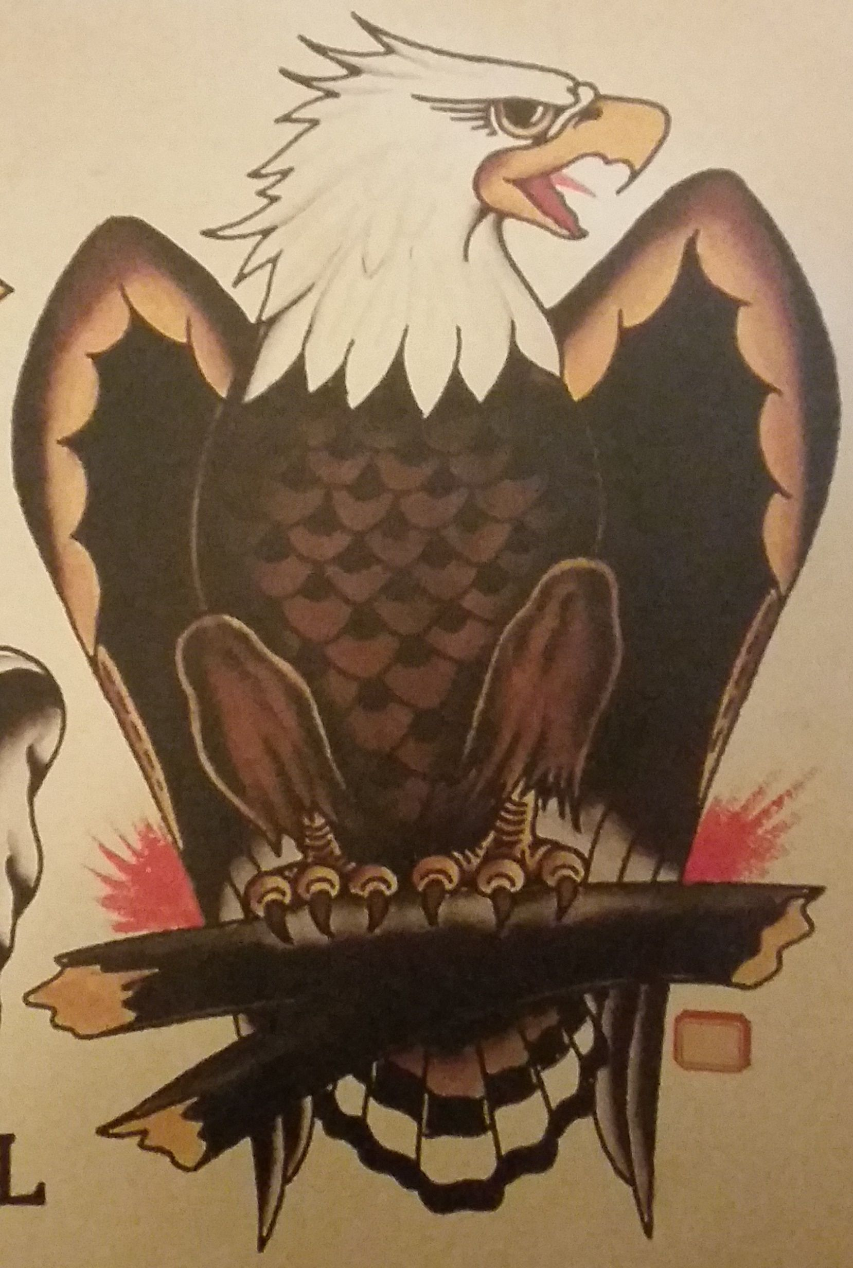 American eagle tattoos high quality photos and flash - Traditional Old School Tattoo Sailor Jerry Eagle Bird