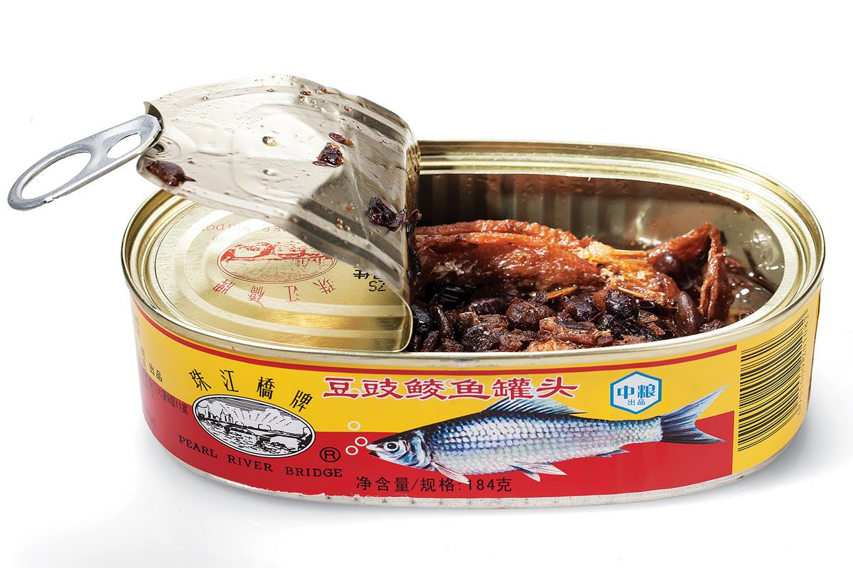 Freshwater fish dace - Peel Back The Lid On A Tin Of Dou Chi Ling Yu Chinese Dace Freshwater Carp And It S Enough To Put A Can Of Sardines To Shame