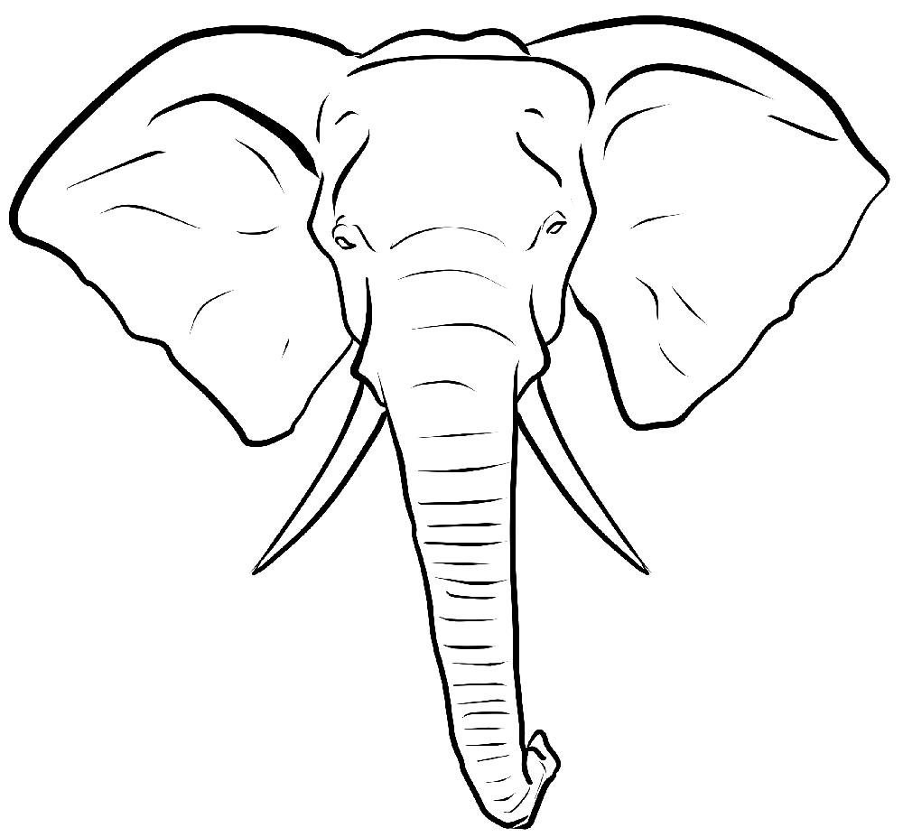 Opal Manor Elephant Head Decoracao