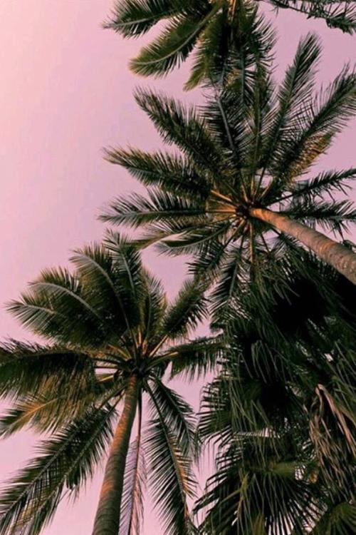 4400 Koleksi Gambar Tumblr Keren Untuk Instagram Gratis