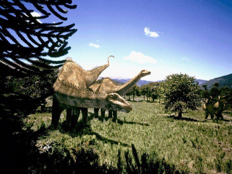 Dinosaures Wallpaper Dinosaurios