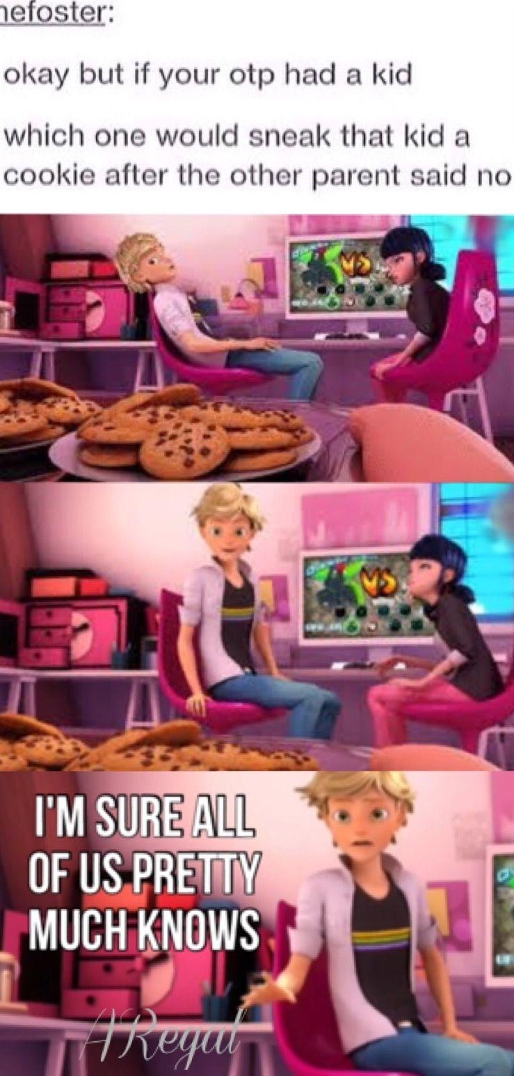Miraculous Ladybug|| cookies for Adrien